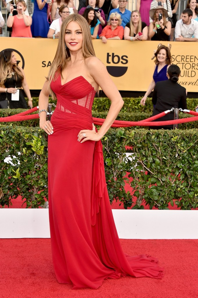 sag-awards-2015-sofia-vergara